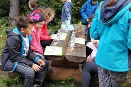 Dzieci, uczniowie siedzą przy drewnianym stole zbitym z dwóch grubych desek. Dwoje chłopców stoi za stołem. Za dziećmi są ciemnozielon drzewa. Na stolepołożone sa kolorowe, otwarte książki i butelki z wodą. Uczniowie patrzą do książek